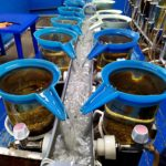rng-continues-to-implement-program-for-replenishment-of-aquatic-biological-resources-02