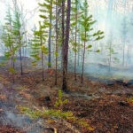 rng-takes-active-part-in-extinguishing-forest-fires-in-yakutia-05